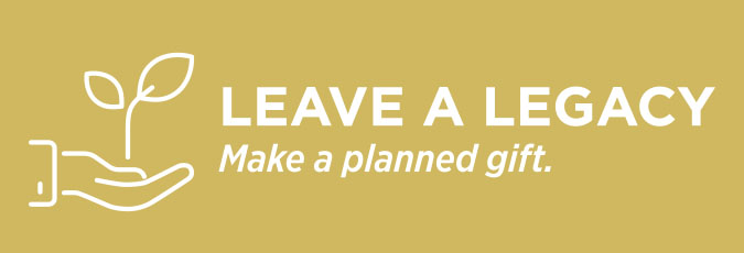 Leave a legacy-make a planned gift to Legal Aid.
